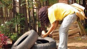 Cinco bairros receberão o Mutirão contra o Aedes neste final de semana