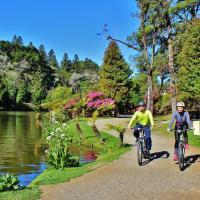 Cresce procura por passeios turísticos de bicicleta